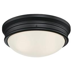 Westinghouse Lighting 6324100 Meadowbrook Two-Light Indoor F