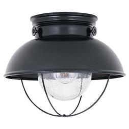 Sea Gull Lighting 8869-12 Sebring One-Light Outdoor Flush Mo