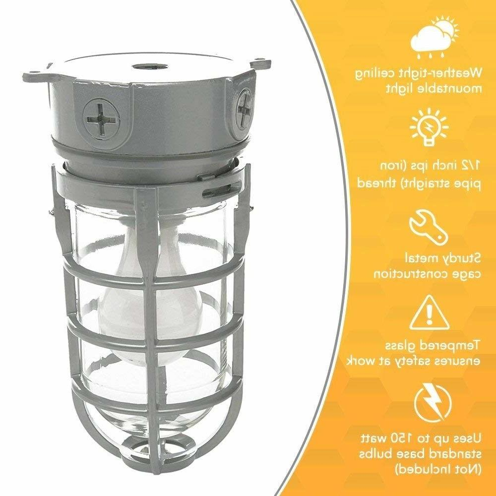 Outdoor Porch Ceiling Light Fixture Flush Metal Silver Caged