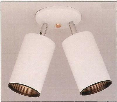 White With Black Baffle Adjustable 2 Light Spot Ceiling Fixt