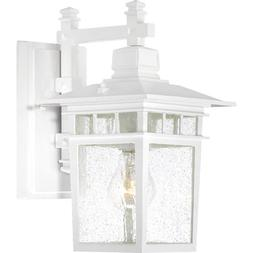 Nuvo Lighting 60/4951 Cove Neck One Light Wall Lantern/Arm D
