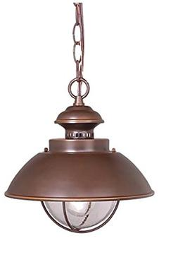 Vaxcel OD21506BBZ Harwich 10-Inch Outdoor Pendant, Burnished