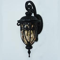 Yosemite Home Decor Viviana 1 Light Outdoor Wall Lantern